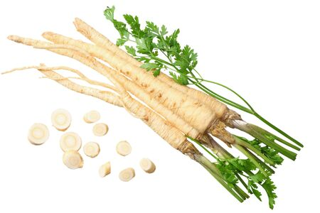 fresh parsley root isolated on white background. top view