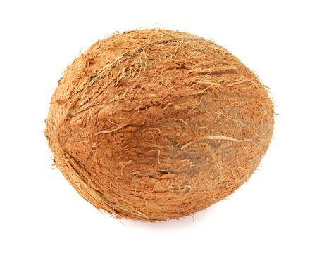 single fresh coconut isolated on white background Stock Photo