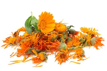 marigold flowers with petals isolated on white background. calendula flower. Stock Photo