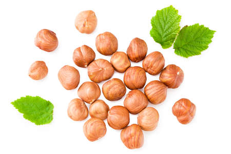hazelnuts with green leaf isolated on white background. top view