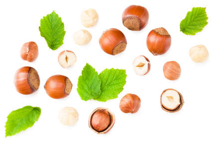 hazelnuts with green leaf isolated on white background. top view Standard-Bild - 151529452