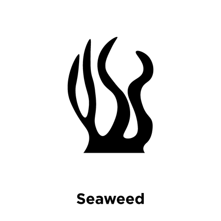 Seaweed icon vector isolated on white background, logo concept of Seaweed sign on transparent background, filled black symbol