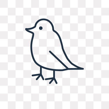 Bird vector outline icon isolated on transparent background, high quality linear Bird transparency concept can be used web and mobile