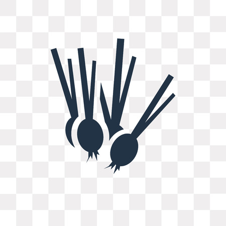Spring onion vector icon isolated on transparent background, Spring onion transparency concept can be used web and mobile