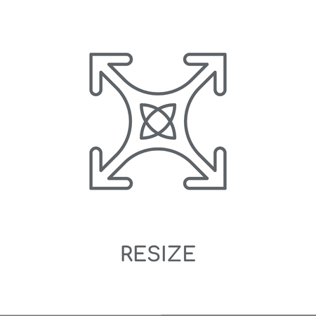 Resize linear icon. Resize concept stroke symbol design. Thin graphic elements vector illustration, outline pattern on a white background, eps 10. Çizim
