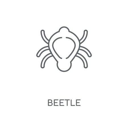 Beetle linear icon. Beetle concept stroke symbol design. Thin graphic elements vector illustration, outline pattern on a white background, eps 10.