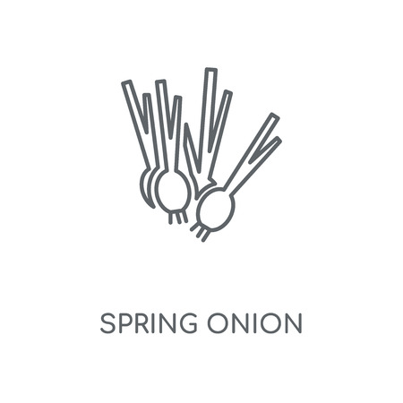 Spring onion linear icon. Spring onion concept stroke symbol design. Thin graphic elements vector illustration, outline pattern on a white background, eps 10.