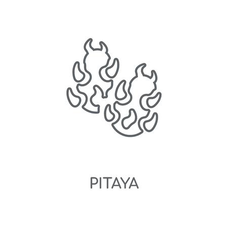 Pitaya linear icon. Pitaya concept stroke symbol design. Thin graphic elements vector illustration, outline pattern on a white background, eps 10. Illustration