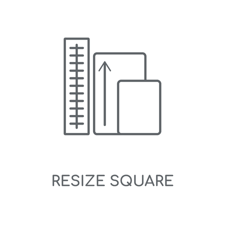 Resize Square linear icon. Resize Square concept stroke symbol design. Thin graphic elements vector illustration, outline pattern on a white background