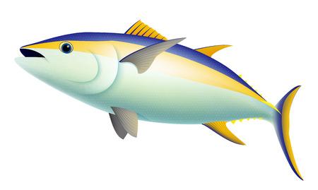 Realistic Yellow Fin Tuna Fish