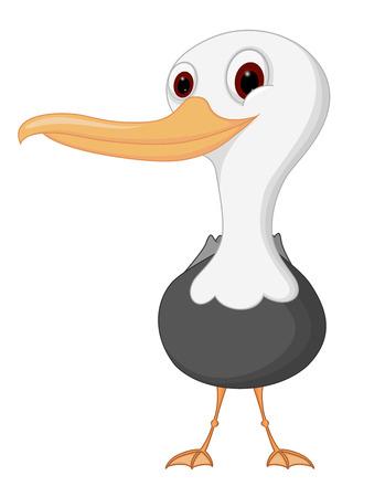 Seagull cartoon 矢量图片