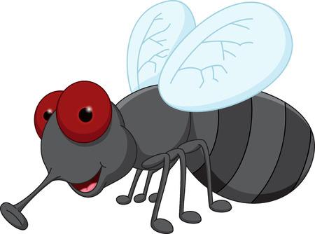 fly cartoon: Cute fly cartoon