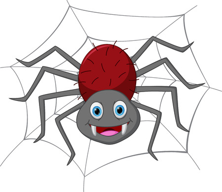 spider web: Funny spider cartoon