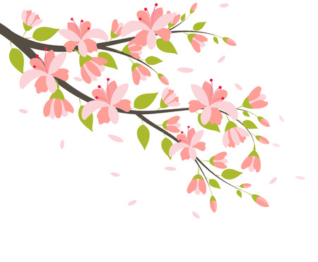 spring tree: Beautiful Cherry Blossom Branches Illustration