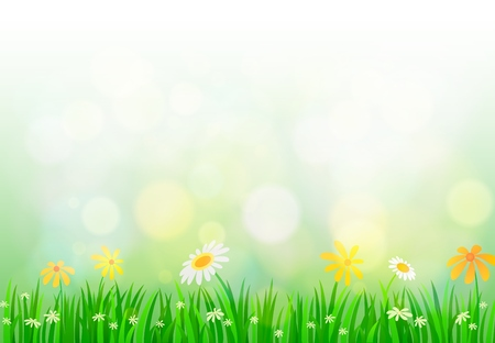 camomiles macro: Spring background with light Illustration