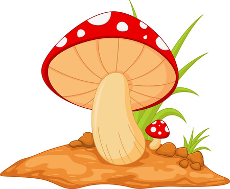 spore: Mushrooms isolated on white