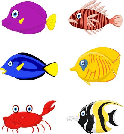 peces caricatura: De dibujos animados Peces tropicales