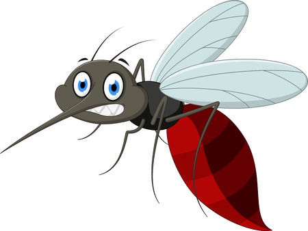 insect mosquito: Angry mosquito cartoon