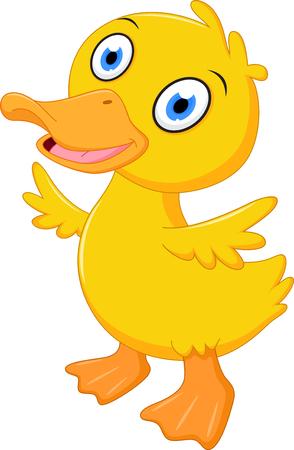 pato caricatura: Little baby duck cartoon
