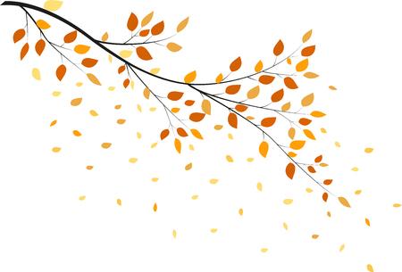 Arbre d'automne avec les feuilles jaunes