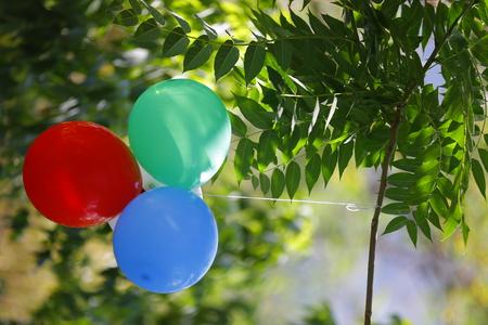 Balloons in the garden Stock Photo