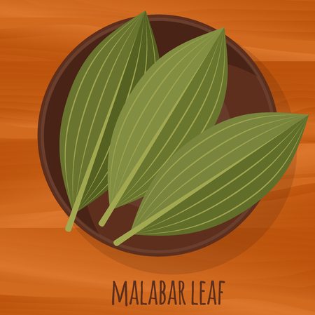 Malabar cassia leaf flat design vector icon. Flavor spices and herbs menu template collection. Illustration