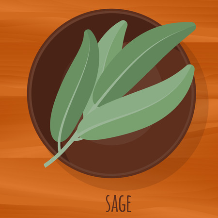 Sage flat design vector icon. Flavor spices and herbs menu template collection.