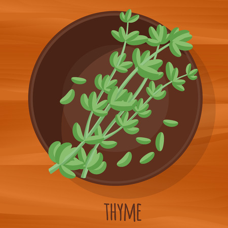 Thyme flat design vector icon. Flavor spices and herbs menu template collection. Иллюстрация