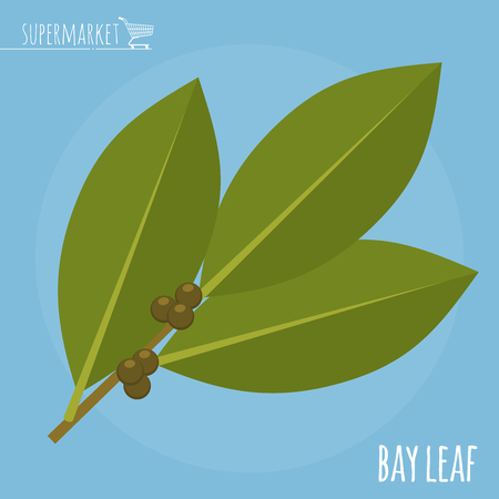 Bay leaf flat design vector icon. Flavor spices and herbs menu template collection.