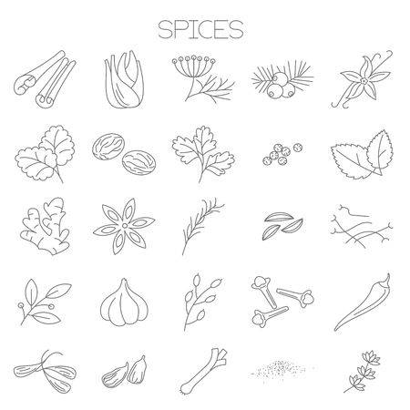 Thin line spices vector interface icon set.
