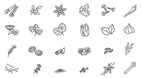 Conjunto de iconos de interfaz de vector de especias de línea delgada.