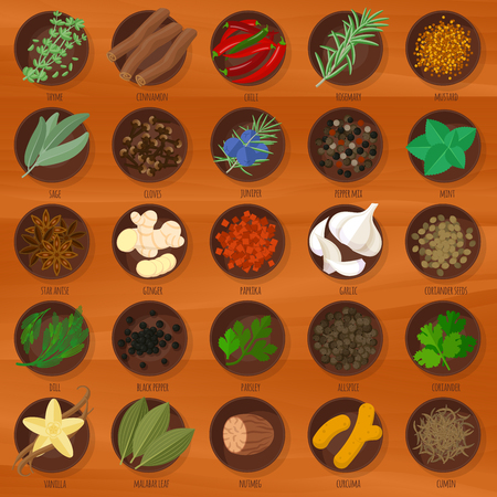 Vector flat design herbs and spices icon set.