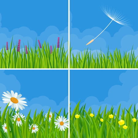 Spring and summer meadow fresh grass and flowers over clear sky with light clouds and dandelion flying seeds vector background set.