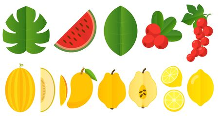 Flat design summer texture vector design element set.