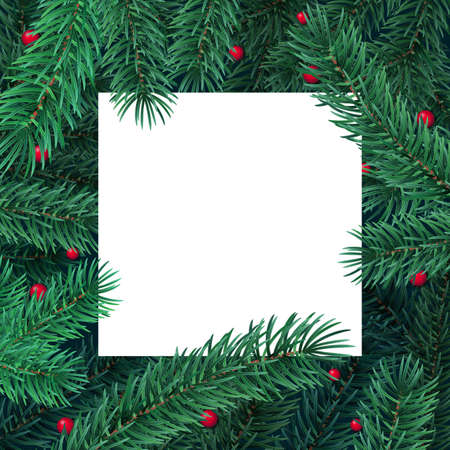 Winter holiday background with blank white card and border frame of Christmas tree branches and berries. Vector template for New year card, banner, party poster and landing header.