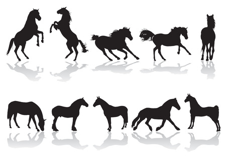Silhouettes of horses in motion Stock Vector - 8380281