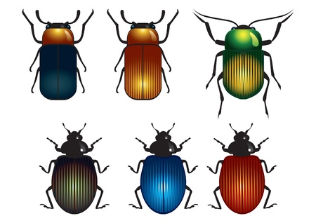 A few bright beetles of different colors Stock Vector - 11173159