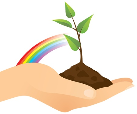 sprig: Hand holding a seedling tree.