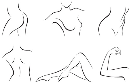set of stylized female body parts