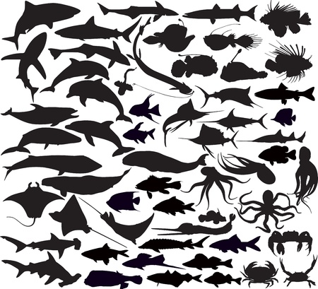 Set of silhouettes of fishes Stock Vector - 18390057