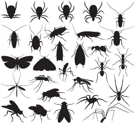 images silhouettes of household pests Vector
