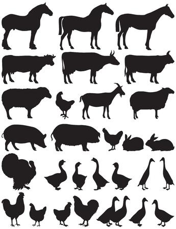 silhouetten van boerderijdieren Vector Illustratie