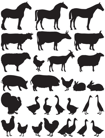 silhouettes of farm animals Stock Vector - 19021728