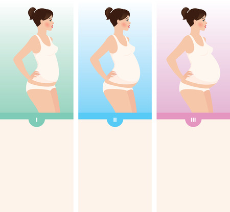 Young woman in the three stages of pregnancy Vector