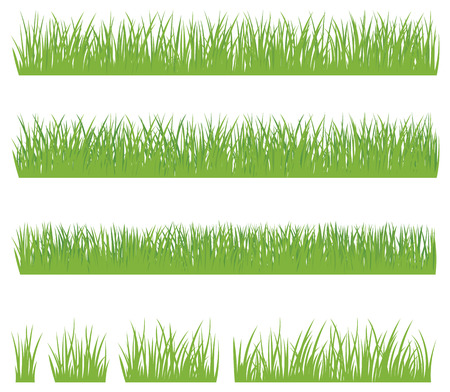 grass: Stock vector illustration set of green grass isolated on white background
