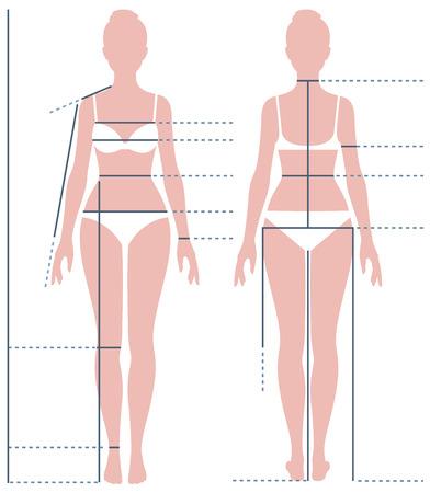 sexo femenino: cuerpo femenino en toda su longitud para medir el tamaño del vector de la ilustración de la figura
