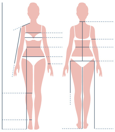 Female body in full length for measuring the size of the figure Stock vector illustration 矢量图像
