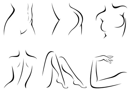 Set stylized female body parts vector illustration of a linear Ilustração