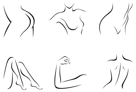 beautiful naked woman: Vector illustration of set of stylized female body parts