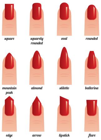 uñas pintadas: Ilustración vectorial material sobre un fondo blanco conjunto de uñas con esmalte de uñas pintada de rojo diferentes formas